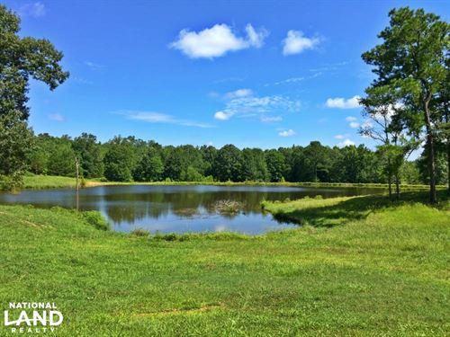 Lamison Lake & Camp Tract : Lamison : Wilcox County : Alabama
