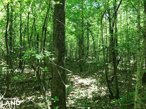 Indian Creek Hunting, Homesite, & W : Fayette : Alabama