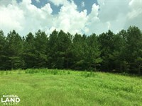 McKinney Branch Homesite, Pasture : Russellville : Franklin County : Alabama