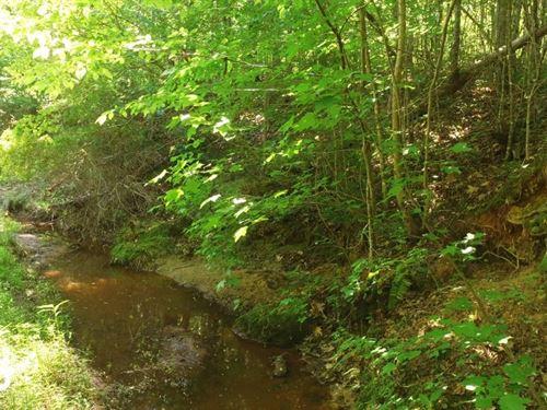 Hwy 25 Recreational/Timber Homesite : Edgefield : South Carolina
