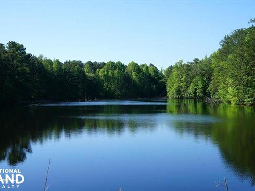 Kline East Tract : Sylacauga : Talladega County : Alabama