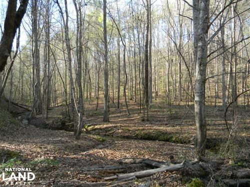 Beaver Creek Hunting & Timber Tract : Bankston : Fayette County : Alabama