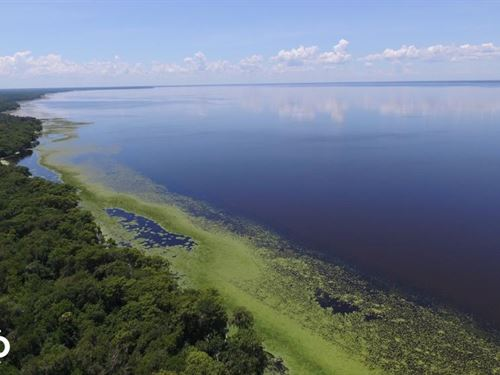 Lake George Waterfront Tract : Georgetown : Putnam County : Florida