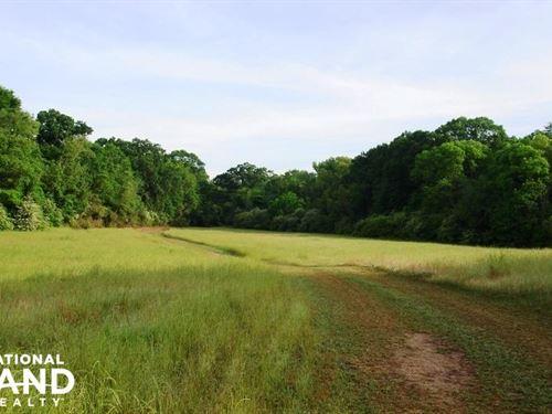 Havana Hunting or Mini-Farm Opportu : Havana : Hale County : Alabama