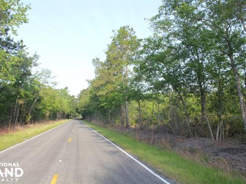 Large Acreage Home Site And Minifar : Summerville : Berkeley County : South Carolina