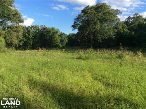 Crisler Road 21.4 Acres : Terry : Hinds County : Mississippi