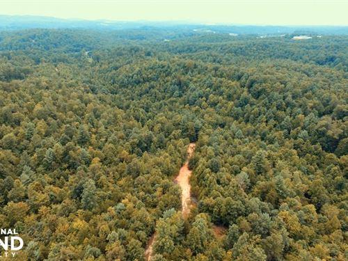 Green Mountain Property 73.53 Acres : Lenoir : Caldwell County : North Carolina