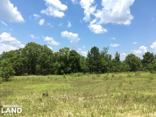 Carolina Sandhills Wildlife Refuge : Patrick : Chesterfield County : South Carolina