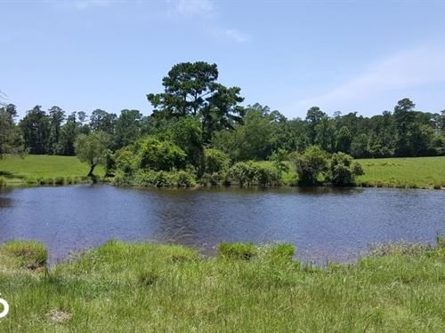 110 Acre Trinity County Ranch/Homes : Apple Springs : Trinity County : Texas