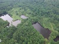 Davis Creek Hunting And Fishing : Vance : Tuscaloosa County : Alabama