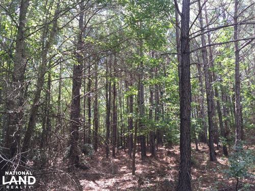 Marshall Road Homesite or Hunting : Wetumpka : Elmore County : Alabama