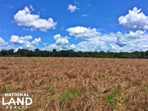 Excel Frisco Highway Farm : Frisco City : Monroe County : Alabama