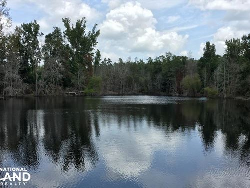 Carolina Hunting Estate With Pond : Salley : Aiken County : South Carolina
