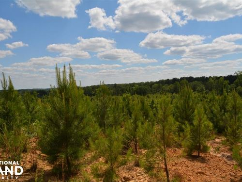 Sulligent Timber Investment And Rec : Sulligent : Lamar County : Alabama