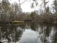 Lynches River Recreational Land : Johnsonville : Florence County : South Carolina