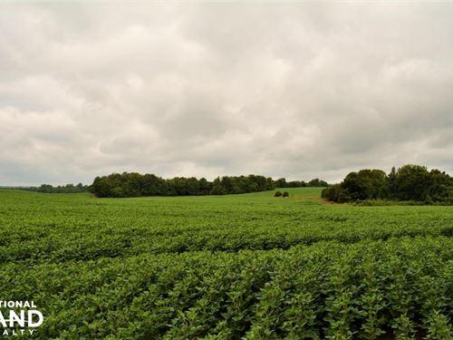 Natchez Trace Crop Land And Recreat : Oakland : Lauderdale County : Alabama