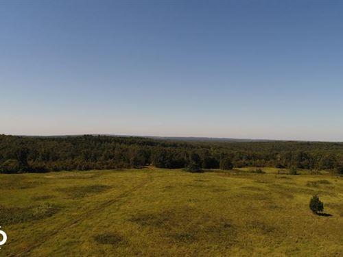 338 Acre Pasture And Timberland : Bradford : Jackson County : Arkansas