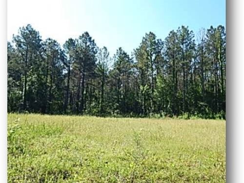 270 Acres In Madison County : Canton : Madison County : Mississippi