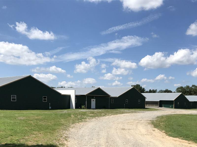 4 house breeder farm on 74