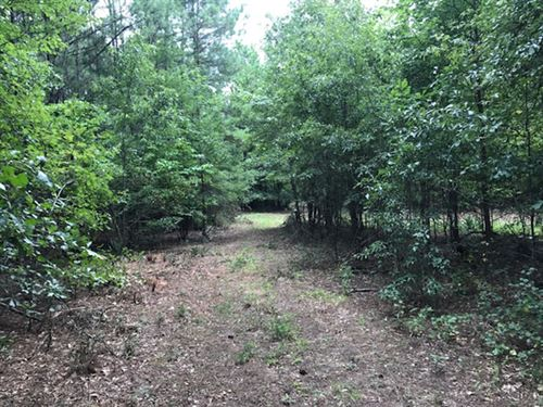 Nice Wooded Homesite Near Town : Jackson : Butts County : Georgia