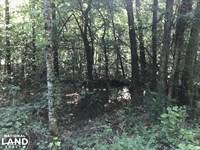 Little Hurricane Creek Homesite And : Vance : Tuscaloosa County : Alabama