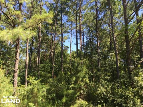 Kent Homesite With Pond And Creek : Tallassee : Elmore County : Alabama