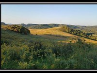82 Acres With Pond And Views : Kimbolton : Guernsey County : Ohio