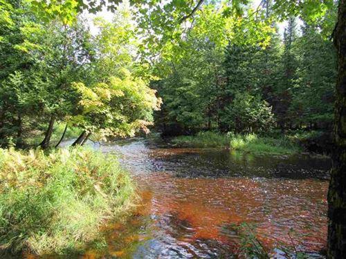 200 Acres Hwy 432, 1104252 : Trenary : Delta County : Michigan