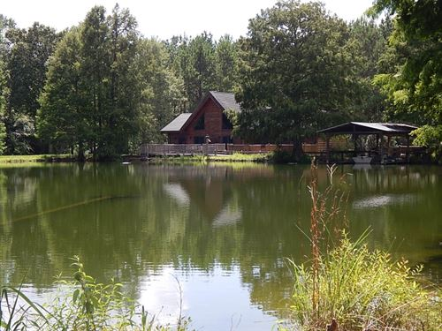 Cabin/Lake/Creek & 193 Acres/ : Franklinton : Washington Parish : Louisiana