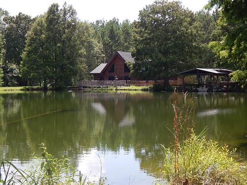 Cabin/Lake/Creek & 193 Acres/ : Franklinton : Washington Parish : Louisiana