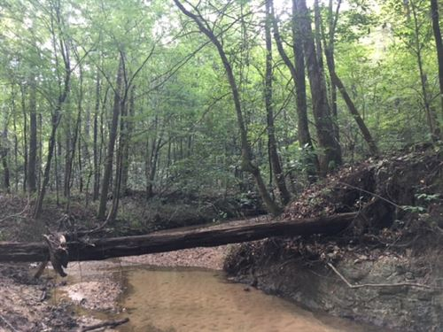 84.33 Acres With Beautiful Flowing : McComb : Pike County : Mississippi