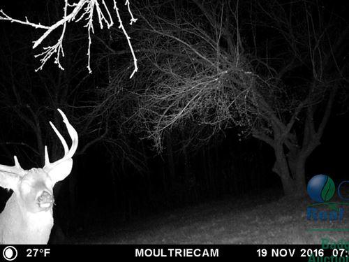 Remarkable Deer Hunting Camp : La Farge : Vernon County : Wisconsin