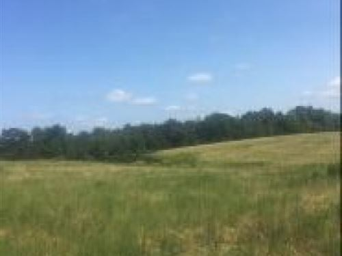 298 Acres In Panola County : Sardis : Panola County : Mississippi