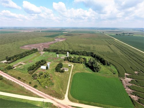 Beautiful Acreage With Mature Trees : Elkton : Brookings County : South Dakota