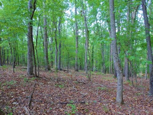 Reduced - Hardwood, Cabin & Cre : Tignall : Wilkes County : Georgia
