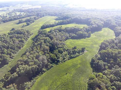 Franklin Valley - 125 Acres : Jackson : Ohio