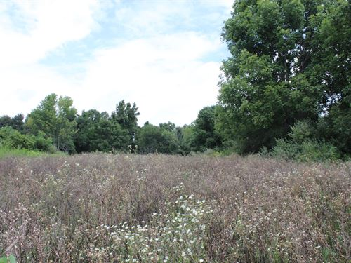 Jockey Hollow - 10 Acres : Flushing : Harrison County : Ohio