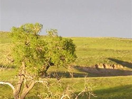 Fenno Ow Ranch : Lusk : Niobrara County : Wyoming