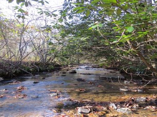Hunting, Timber, Acreage In Va : Stuart : Patrick County : Virginia