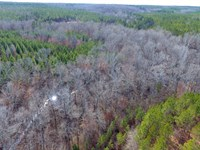 490+/ Acres, Oak Bowery Plantation : Lafayette : Chambers County : Alabama