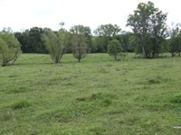 135 Ac, Timberland With Home Site : Climax Springs : Camden County : Missouri