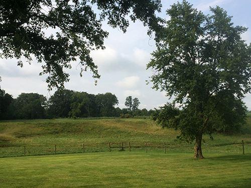 Farm Auction In Wayne Co, Indiana : Greens Fork : Wayne County : Indiana