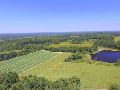 Quail Hollow Farm : Charlotte : Dickson County : Tennessee