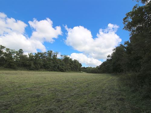 Mush Run Rd - 150 Acres : Athnes : Athens County : Ohio
