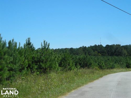 Reduced, 20 Acres Off Hwy 27 Agric : Buchanan : Polk County : Georgia