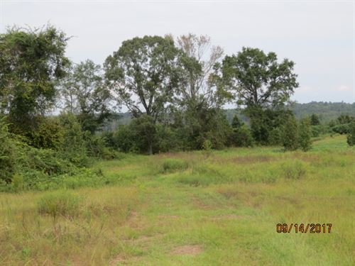 Rural Home Site With Pastures : Clanton : Chilton County : Alabama