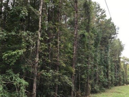 23 Acres On Dixie Springs Road : Summit : Pike County : Mississippi