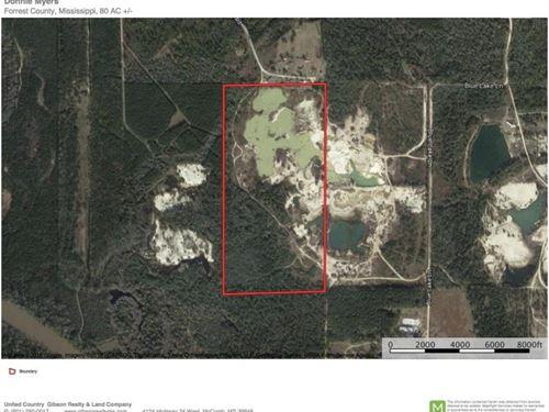 80 Acres Petal, Ms Forrest County : Petal : Forrest County : Mississippi