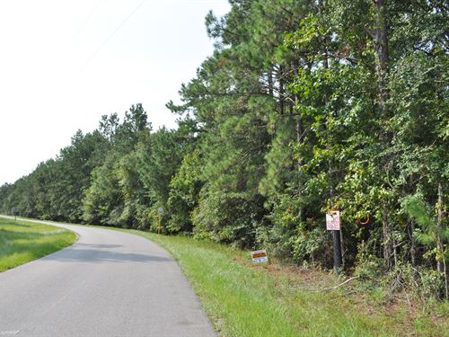 11.67 Acres Timber Switch Rd : Conroe : Montgomery County : Texas