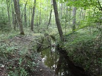 Hunting/Residential/Rec Acreage : Kents Store : Fluvanna County : Virginia